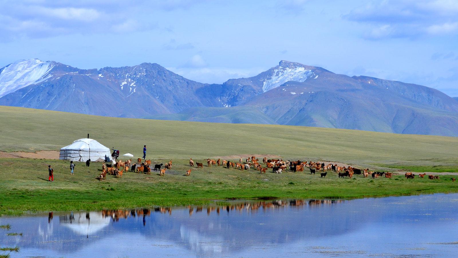 Tour-Mongolia-slider.jpg